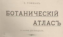 Гофман К