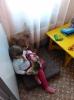 Детская комната для дошколят (Библиотека № 8)_6