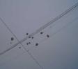 Воздушные шарики с журавликами, запущенные в небо, как символ мира, добра и света.