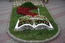 Похожая цветочная клумба появится возле центральной городской библиотеки в ходе реализации проекта «Свежее дыхание»