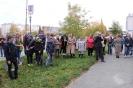 Акция «Бажовская рябина» на площадке возле центральной городской библиотеки