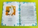 Книга краснотурьинского автора Бориса Углицких «Страна Абракадабрия» - подарок юным читателям центральной городской библиотеки